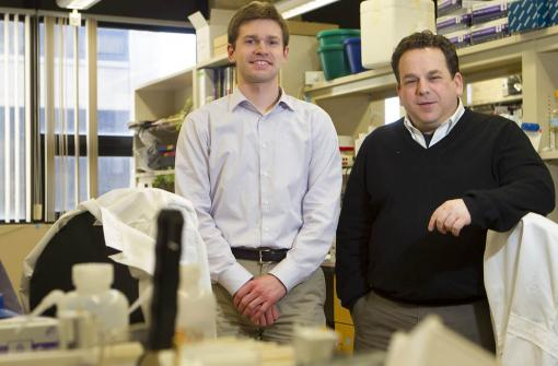 Implicated in rare forms of autism, two genes may have wider role - Matthew Schewede, left, and Eric Morrow learned the value of studying rare forms of autism. Research is done not only for the patients who have rare conditions, but also because doing so can inform research about other forms of autism.