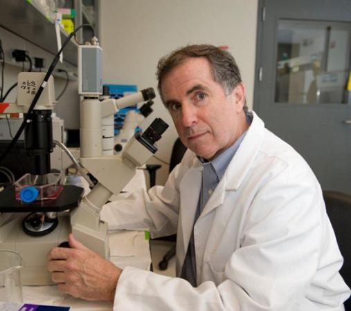 Hope for Duchenne muscular dystrophy - A team led by Justin Fallon has tested a novel therapy in mice. Brown University has licensed the technology in hopes of developing a treatment for thousands of young boys diagnosed every year.