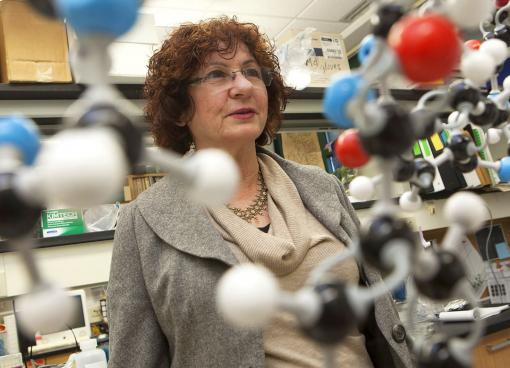 """Edith Mathiowitz - """"The distribution [of orally delivered protein-based medicines] in the body can be somehow controlled with the type of polymer that you use."""""""