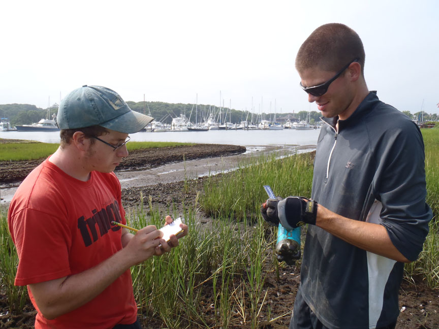 Field research in the great outdoors: Tyler Coverdale, right, and fellow student Eric Axelman gather field data on Cape Cod. Some ecological problems on the Cape have roots in the 1930s, which analysis of historical photographs discovered.