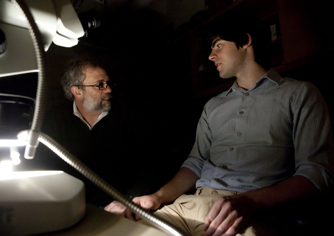 A needle in a lunar haystack: Alberto Saal (left) and Thomas Weinreich, a Brown Undergraduate, used Apollo lunar samples to show that water content in primitive Earth and lunar magma was similar. Credit: Mike Cohea/Brown University