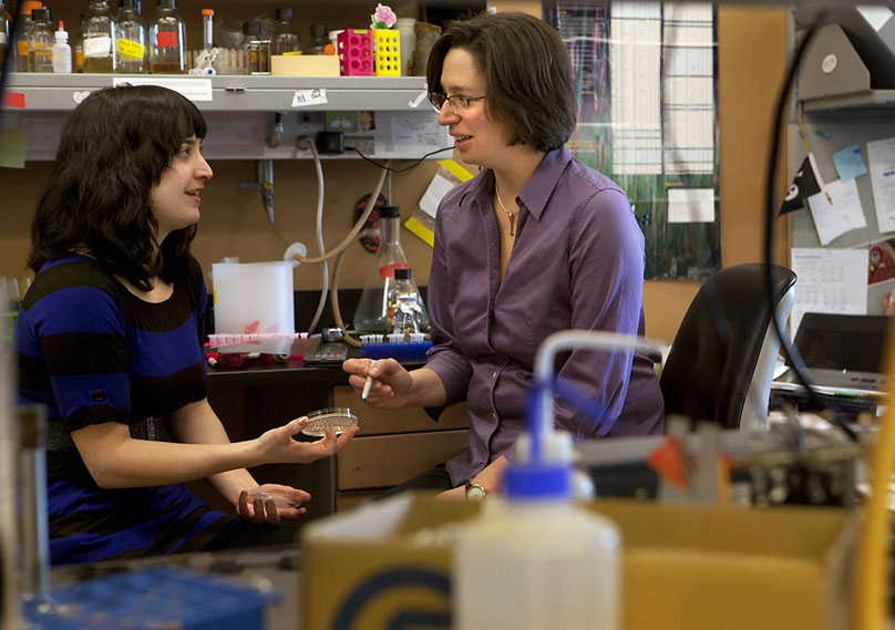 Cells get by with a little help: Tricia Serio, right, and Susanne DiSalvo found that cells have many chances to stop runaway misfolding of proteins — and they only need a little help to get the upper hand.Credit: Mike Cohea/Brown University