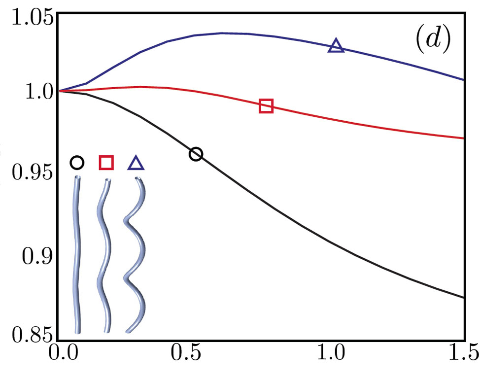 Powerful swimmers: a comparison: In the graph, the vertical axis is the ratio of speed in a viscoelastic fluid to speed in water. The horizontal axis is the degree of viscoelasticity. A flagellum with a high-angle helix, labeled with triangle, swims faster in a viscoelastic fluid than in water  when the viscoelasticity is just right. As the helix angle decreases, the peak enhancement in speed decreases. For low-angle helices (circle), viscoelasticity always makes the swimmer slower than it would be in water. Credit: Powers lab/Brown University