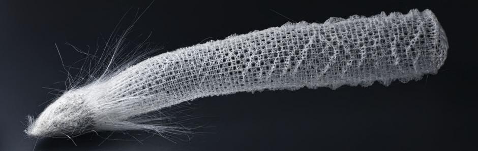Sea Sponge Natural Hair