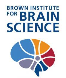 BIBS_logo2.jpg